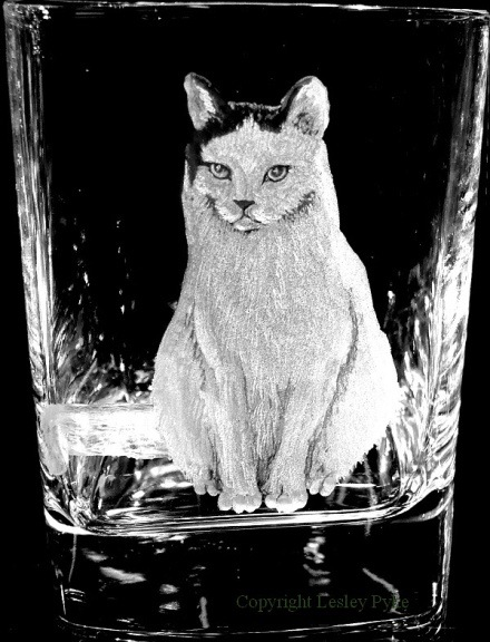Hand engraved cat