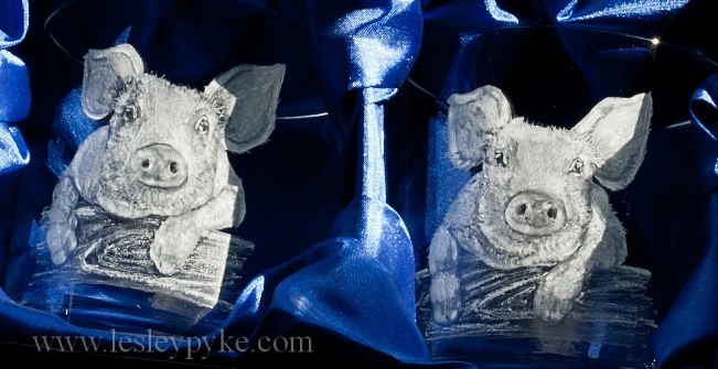 Glass-engraved-pigs