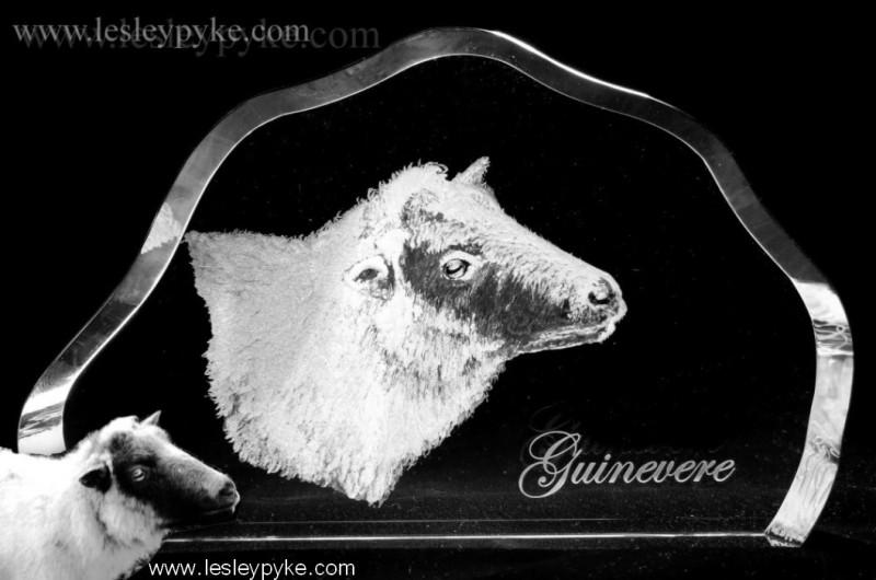 sheep-portrait-1-sm-bw