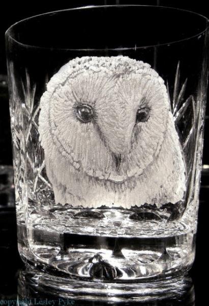 1-Barn-owl